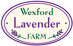 WexfordLavenderFarmLogo
