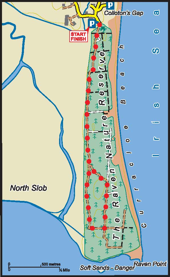 Raven Point Wood Map