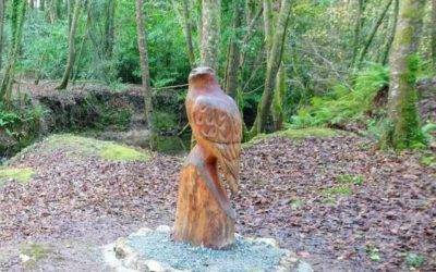 Fantastic new addition to Tintern Trails
