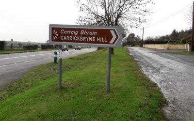Springtime Walk on Carrickbyrne Hill
