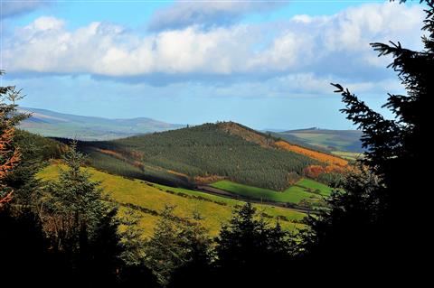 View across wexford from askamore trail