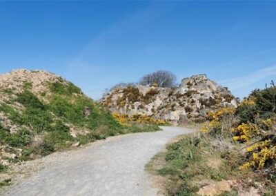 The Rocks – Family Trail